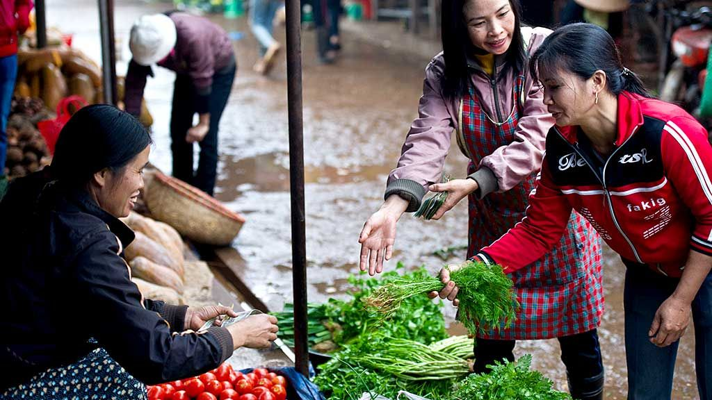 Viet Nam is helping farmers respond to climate change to protect their harvests and their livelihoods. Photo: ADB.