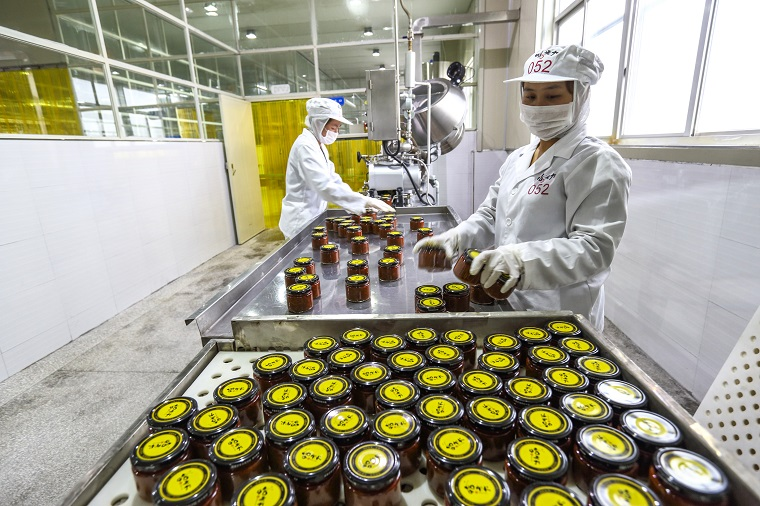 Special economic zones have shown to be centers of growth and incubators of good practice. Photo: ADB.