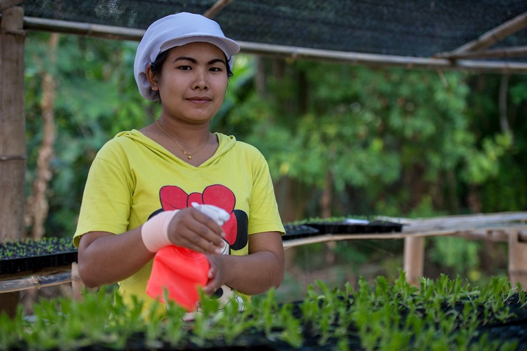 Organic farmers in Thailand want to meet demand for safe food from the growing middle class across the Greater Mekong Subregion. Photo: ADB.